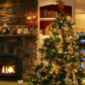 Весела Коледа и Честита нова 2013г.!